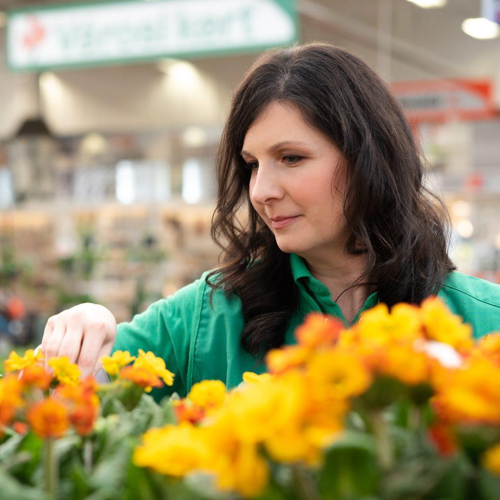 Hogyan ültessünk függő virágtáskát
